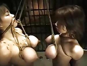 Tits;BDSM;Japanese;Big Natural Tits;Slave;Double;Double Trouble;Short;In Trouble;Short but Sweet;Free Double Short but sweet 10: Double tits in...